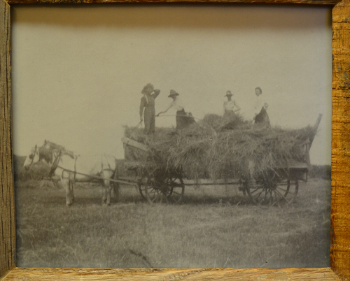 Stewarts Collection Haying Bates Ranch north of Calhan