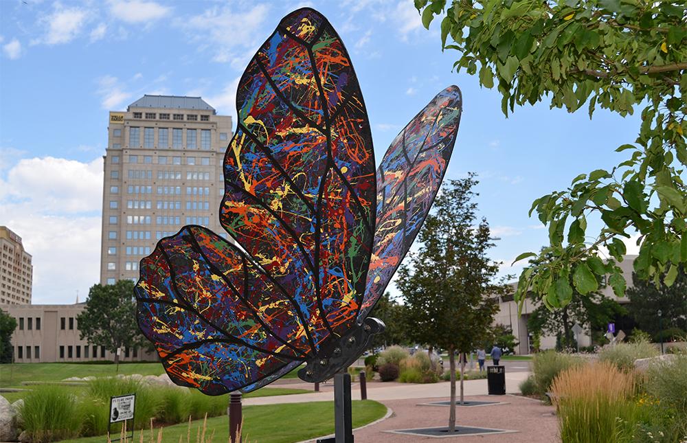 Butterfly Cosmos Serenade