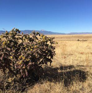 Kane Ranch view