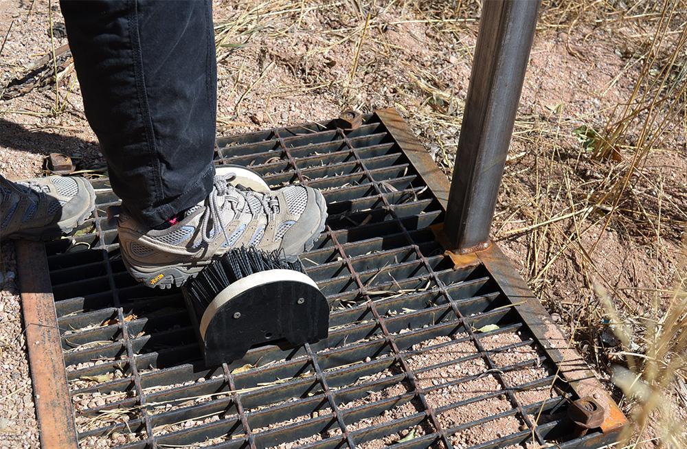 Boot brush and boot