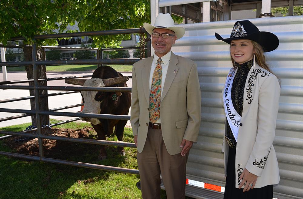 Gonzalez with Link Fair Queen and bull